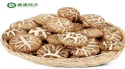 盛通花菇(秦岭农产品板块)