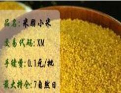 米脂小米(九龙农产品板块)